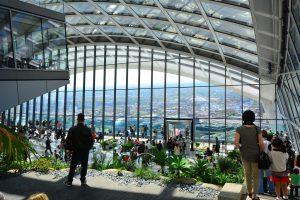 Sky garden above offices to rent in the City of London