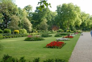 Mackenzie Garden Finsbury Park