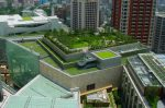 Green roof garden on London office buildings