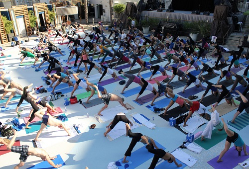 Fitness Festivals Yoga